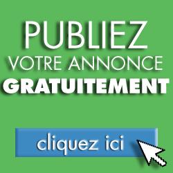 Comment publier une annonce sur Clasf France?